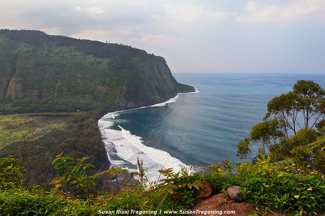 Picture - Overlooking Waipi'o Valley