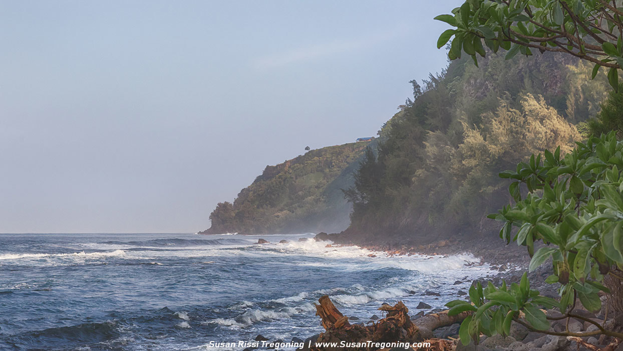 Picture - Rugged Waipi'o Beach