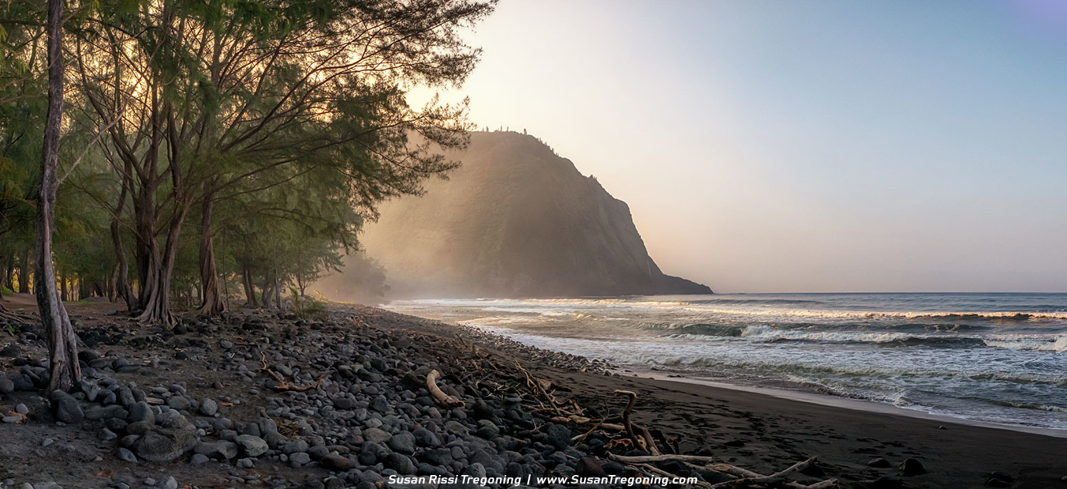 Picture - Waipio Beach Panorama